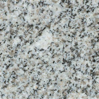 842 Meteorite
